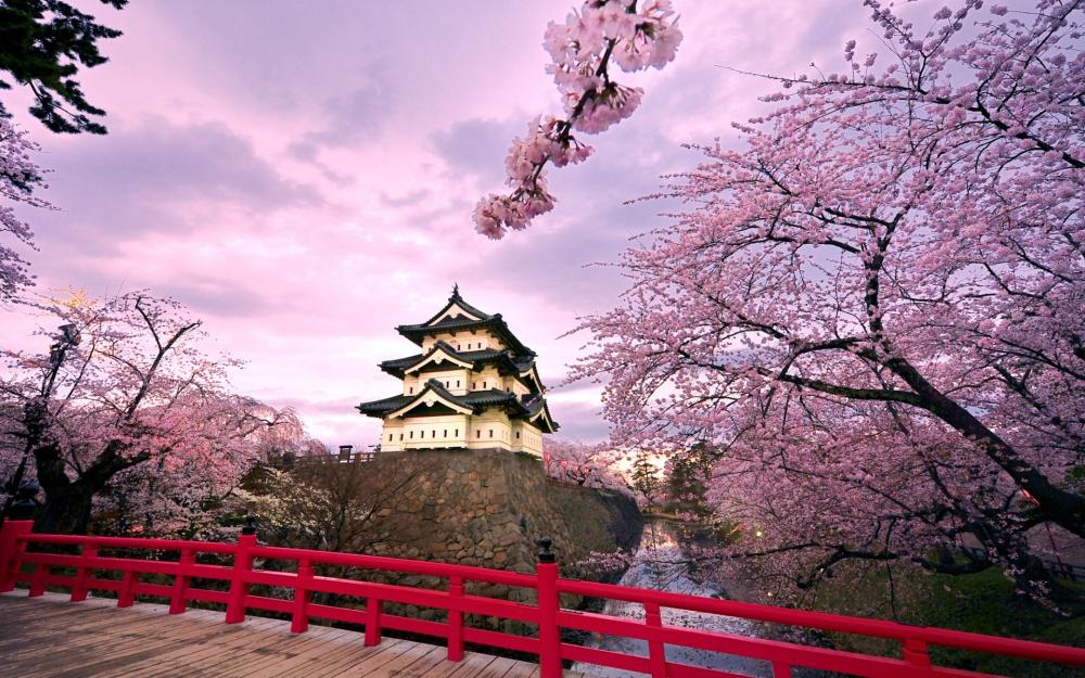 japan-hirosaki-castle-trees-flowering-cherry-flowering-bridge-pond-sky-clouds.jpg